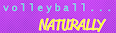 VB Naturally Logo
